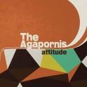THE AGAPORNIS: Attitude