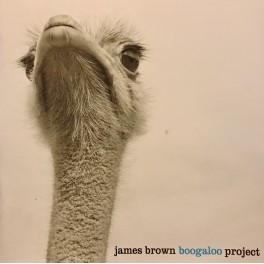 JAMES BROWN BOOGALOO PROJECT